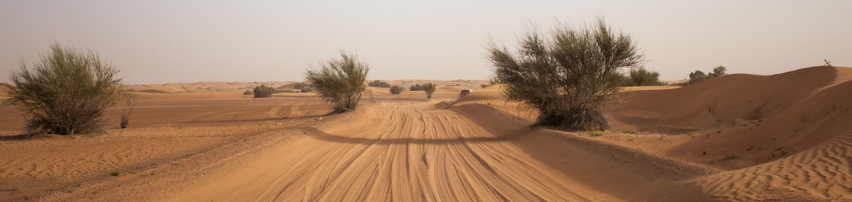 Wahibi Sands, Oman desert